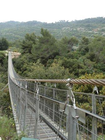 Hanging Bridge at Nesher Park: le pont suspendu