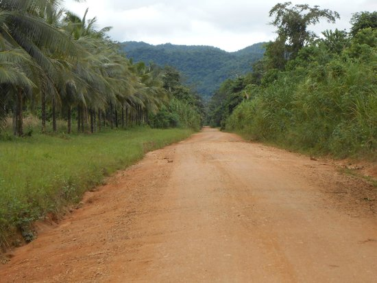 Belizean Dreams : typical local roads throughout the region (off Southern HWY)