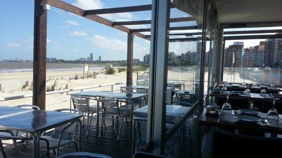 Salmuera: Vista de la Playa Malvin y costa de Montevideo