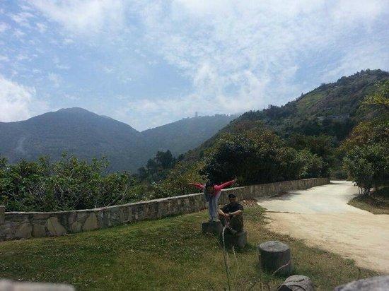 Posada La Hacienda Vieja : compartir