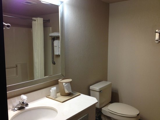 Comfort Inn Asheville Airport: Bathroom