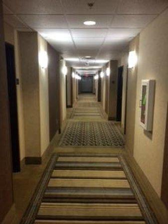 Comfort Inn & Suites: Corridor