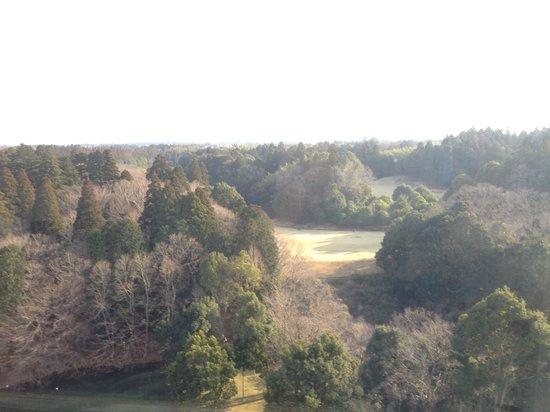 Narita View Hotel: お部屋からみた景色