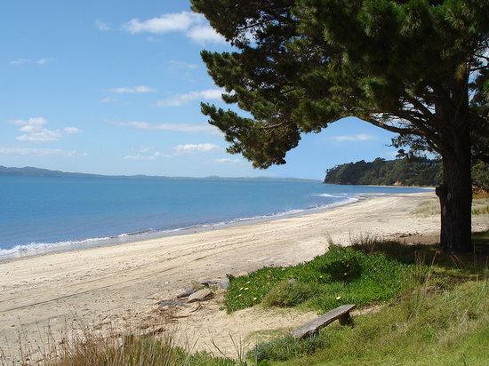 Orua Bay Beach Motor Camp & Accommodation: 3km long beach
