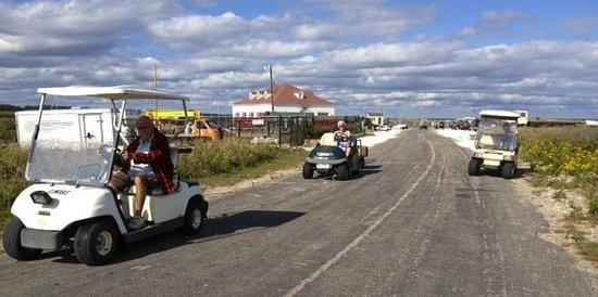 Avalon, The Inn on Cuttyhunk Island: Cart driving