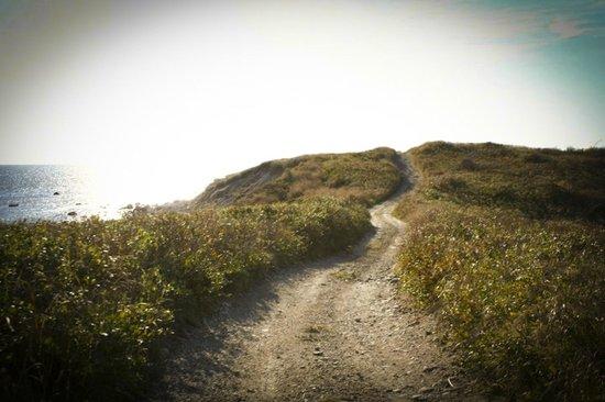 Avalon, The Inn on Cuttyhunk Island: hiking path