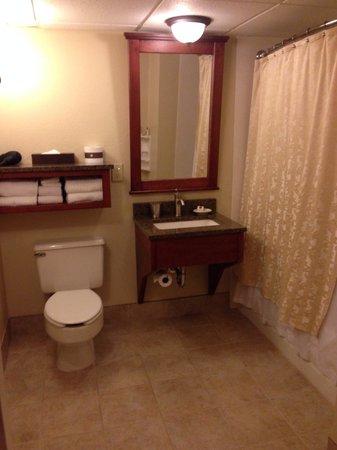 The Omni Grove Park Inn: Bathroom