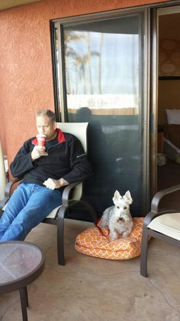 SeaCrest OceanFront Hotel : Morning coffee on my doggy bed