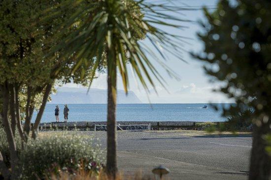 Fairley Motor Lodge : looking across to beach