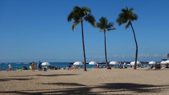 Hilton Hawaiian Village Waikiki Beach Resort : Beach in front of the Hilton Hotel