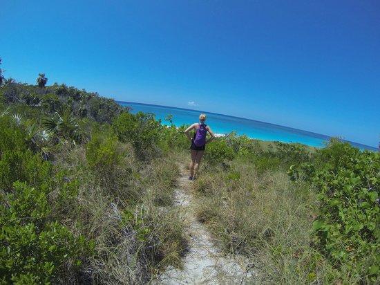 Orange Creek Inn : hike of man o war beach