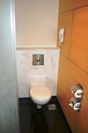 PARKROYAL Kuala Lumpur: Toilet