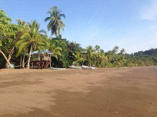 Poor Man's Paradise: What a beach!