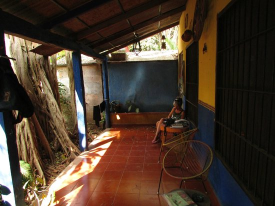 Posada el Jardin : Our room  opened right out to a banyan tree