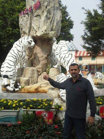 Chimelong Paradise : ali allani 2012