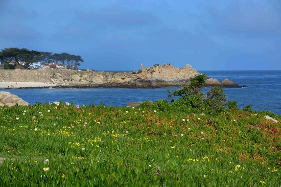 Pacific Grove Oceanview Boulevard: Pacific Grove Oceanview Blvd