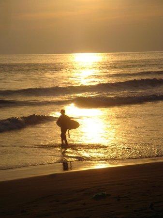 Hotel Luz de Luna: en tu buseta a la playa
