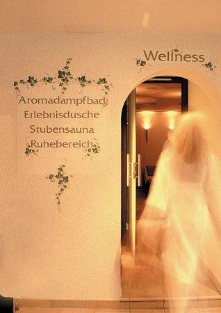 Vita Aktiv Hotel Der Heinrichshof: Zugang Wellnessbereich