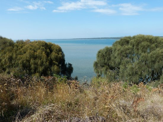 Screw Creek Nature Walk: Stunning views from the hiltop