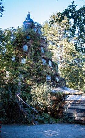 Huilo Huilo Nothofagus Hotel : Hotel Magic Mountain