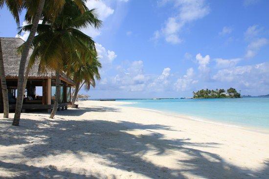 Veligandu Island Resort & Spa : Strandbar