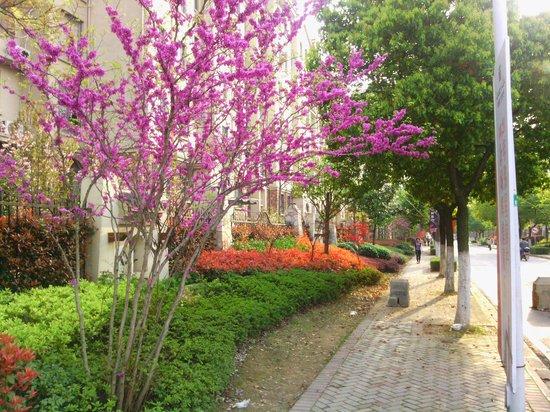 GreenTree Inn Wuhu Binjiang Shimao Express Hotel