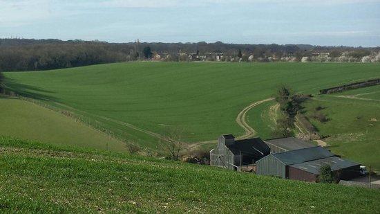 Capstone Farm Country Park: A short walk from the main Capstone area.