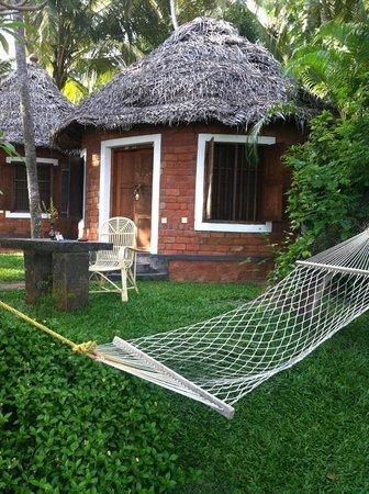 Somatheeram Ayurveda Resort: Special Cottage