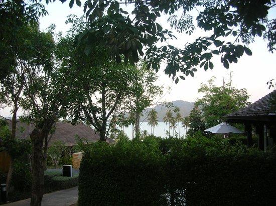 The Vijitt Resort Phuket : Uitzicht tuin