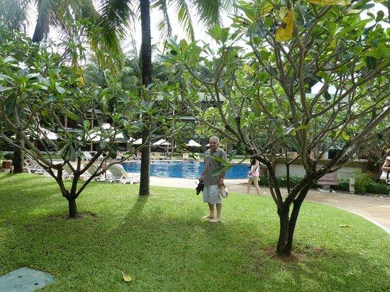 Katathani Phuket Beach Resort: The grounds