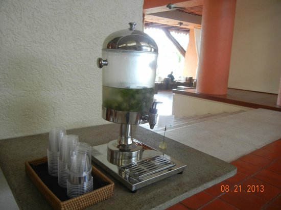 The Westin Resort & Spa Puerto Vallarta: Water for guests