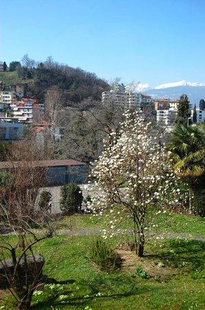 LuganoBella Bed&Breakfast : uno scorcio del bellissimo giardino