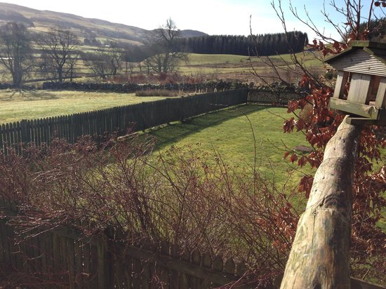 Dalnoid Holiday Cottages: View from old steading