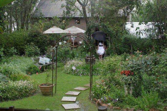 Abbey Rose: back garden