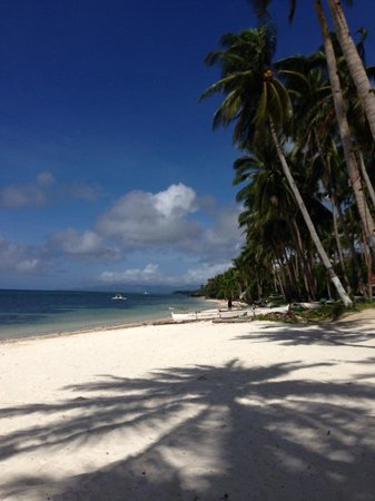 Anda White Beach Resort: the beach