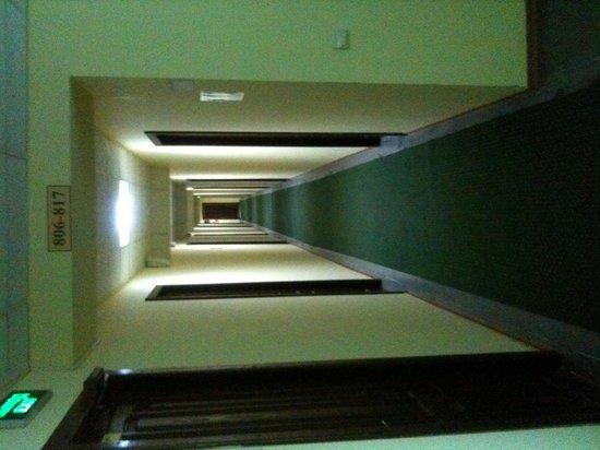 Derzhavinskaya: коридор
