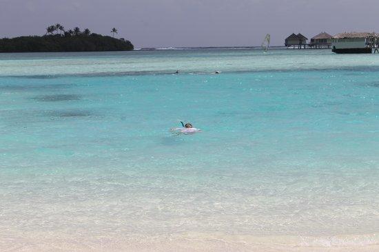 Cinnamon Dhonveli Maldives : лагуна