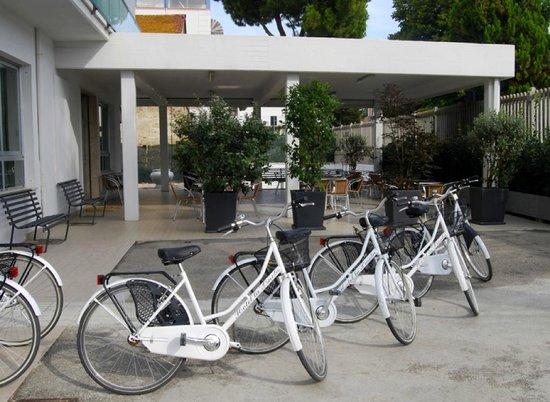 Hotel la Pineta: Uso biciclette gratuito