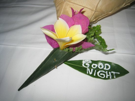 The Watergarden Hotel & Spa : Good night wishes on our bed every night