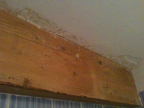 Dolomiti Chalet Family Hotel: muffa causa temperatura polare della stanza....