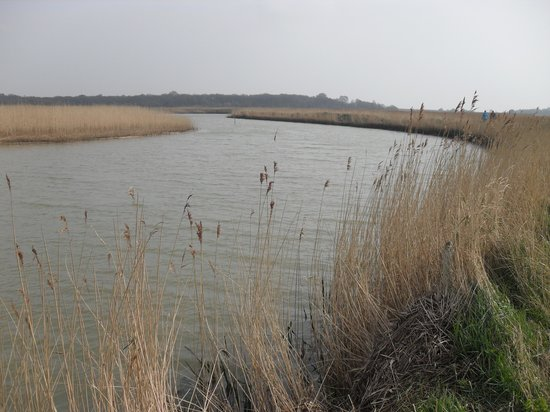 Snape Maltings: The river walk.