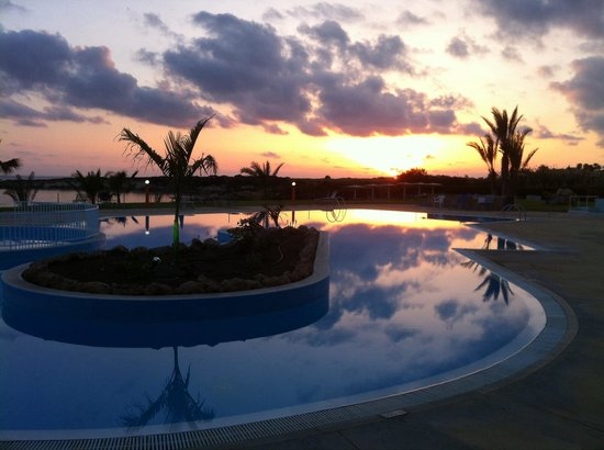 Corallia Beach Hotel Apartments: The pool at sunset