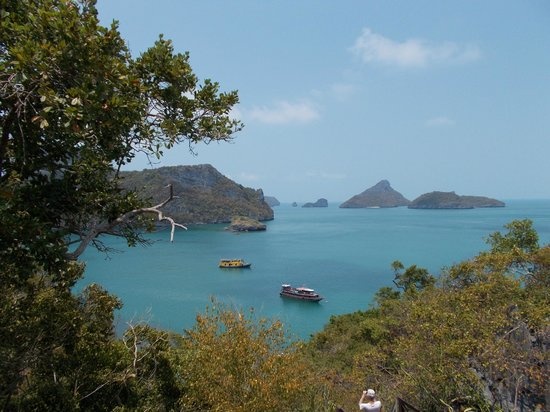 Blue Stars Kayaking: Das Gelbe Schiff (von dem Viewpoint aus)