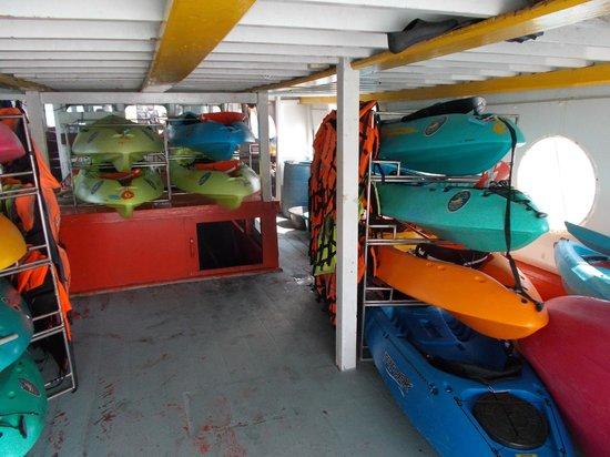 Blue Stars Kayaking: Unter Deck