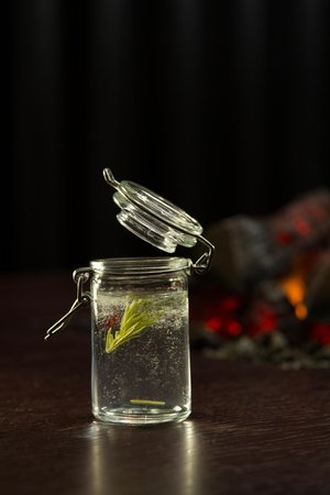 A21 Dining : Spruce shoot from the forest