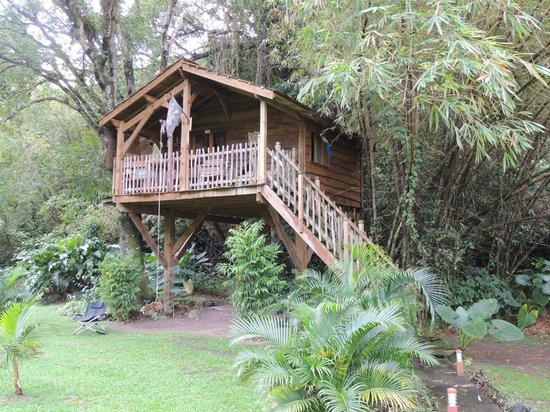 "West Indies Cottage : Cabane "" Le sentier des pirates """