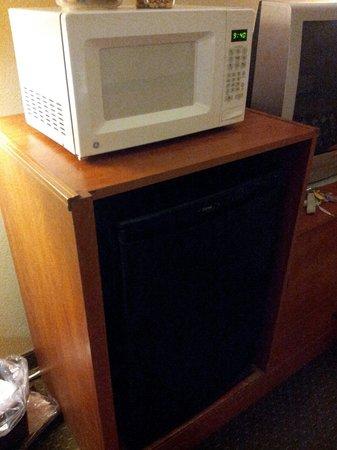 Super 8 by Wyndham Abingdon VA: adequate fridge and microwave. good set up