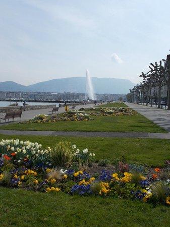 Geneva Hostel: derriere l'hotel wilson a deux pas du lac