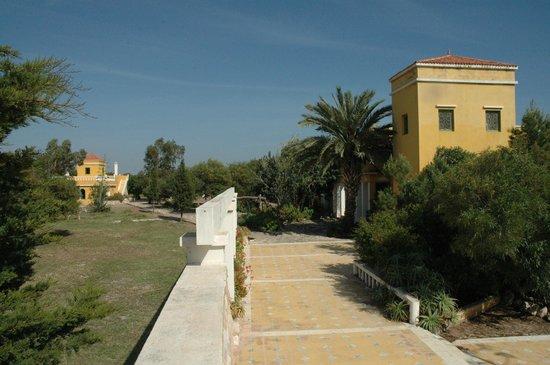 Villa Juba: le parc