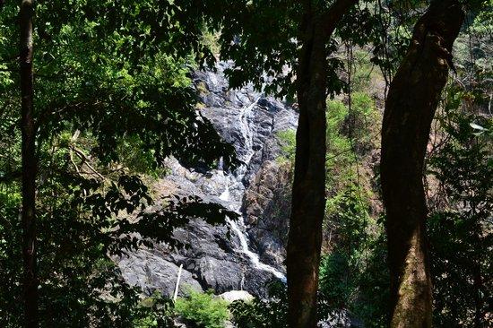 Nature's Nest : Tambdi Surla Water fall